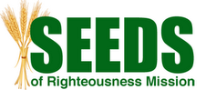 Seeds Logo Refined